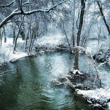 Nieve en el Ferial